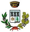 Logo Comune di Medesano