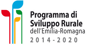 programma-sviluppo-rurale-contributo-feasr